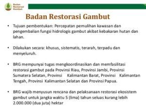 Badan Restorasi Gambut