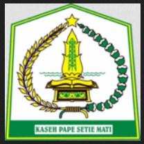 Penerimaan CPNS Aceh Tamiang Kab