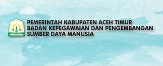 Penerimaan CPNS Kab Aceh Timur