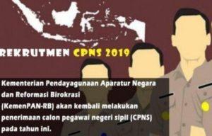 Penerimaan CPNS BKN