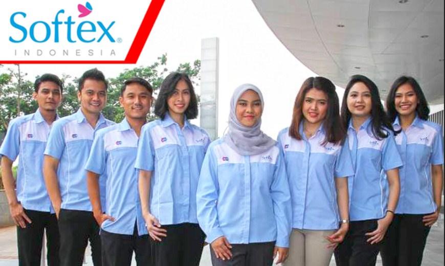 Rekrutmen PT Softex