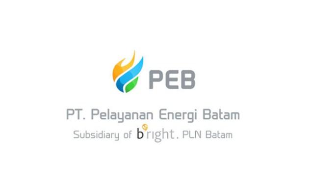 PT Pelayanan Energi Batam