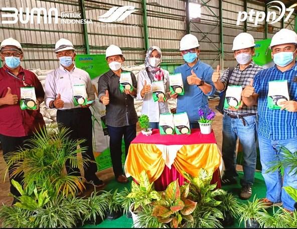 Rekrutmen PTPN VII Lampung