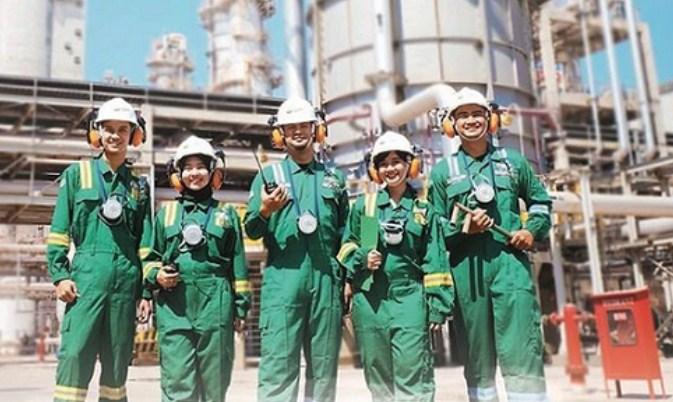 Rekrutmen Magang PT Petrokimia Gresik